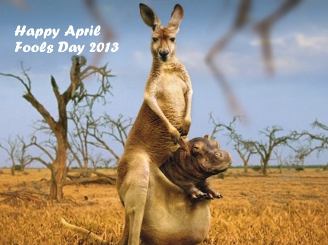 funny_hd_wallpapers_for_april_fools_day